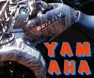 parts for a Yamaha 4 wheeler